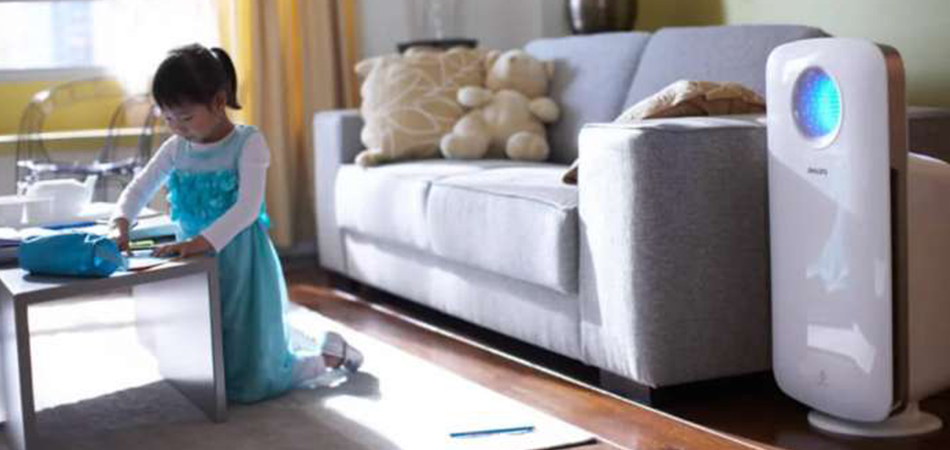 What To Consider Before Buying An Air Purifier For Dust Mites?