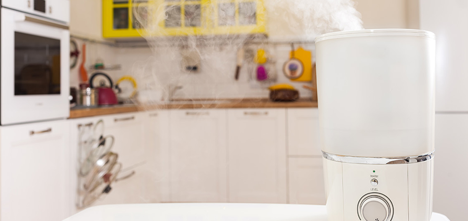 What To Consider Before Buying An Air Purifier For Kitchen Smells