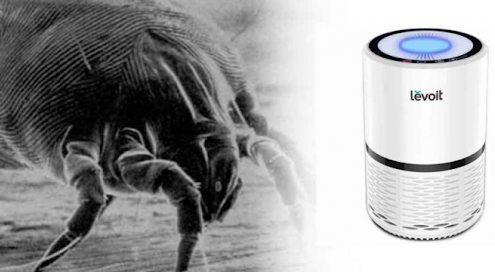 Do air purifiers help with dust mites
