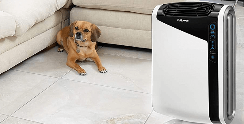 What Is The Best Air Purifier For Remove Odor