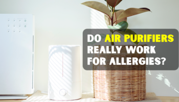 Do Air Purifiers Really Work for Allergies 2020?