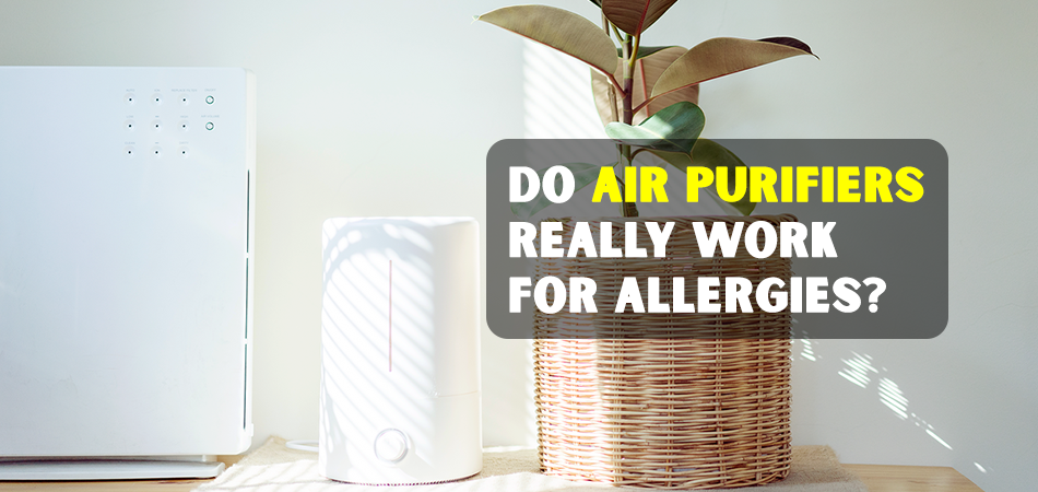Do Air Purifiers Really Work for Allergies
