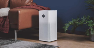 Do Home Air Purifiers Really Work