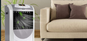 Best Air Conditioner and Air Purifier Combo