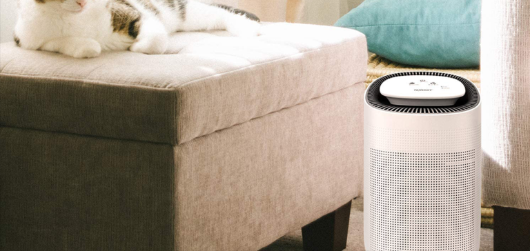 best-dehumidifier-and-air-purifier