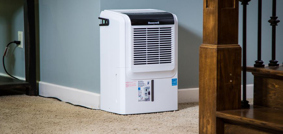Where to Use the Battery Operated Dehumidifiers in the House?